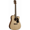 Washburn Apprentice D5CE natural